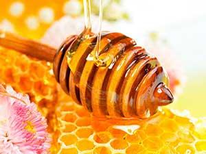 Мед – сокровище природы